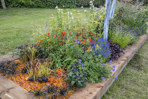 RHS Gardeners World